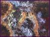 carina-nebula-18-x-24-july-2009