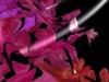 Tiina Moore - Hottest Pink, Digital Print