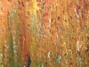 zen-enchanted-forest-24x60-2012