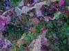 Tiina Moore - Variegated Pebbles, Digital Print